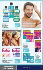Aldi Süd brochure with new offers (64/88)
