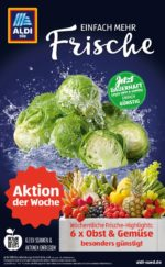 Aldi Süd brochure with new offers (81/88)
