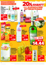 Kaufland brochure with new offers (12/176)