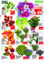Kaufland brochure with new offers (17/176)