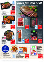 Kaufland brochure with new offers (19/176)